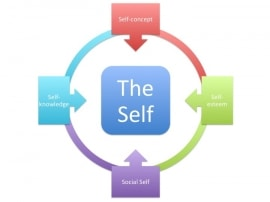 Online quiz The Social Self