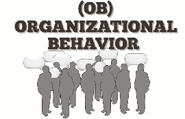 Online quiz An Intorduction to Organizational Behavior