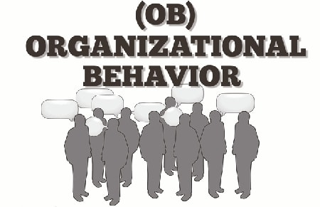 An Intorduction to Organizational Behavior