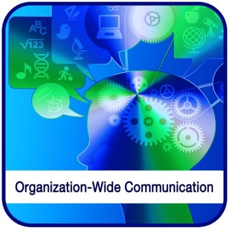 Interpersonal and Organization-Wide Communication