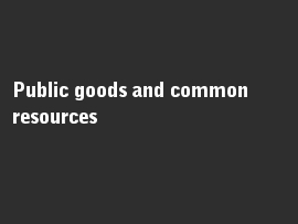 Online quiz Public goods and common resources