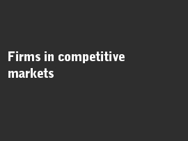 Online quiz Firms in competitive markets