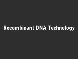 Online quiz Recombinant DNA Technology