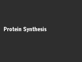 Online quiz Protein Synthesis