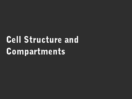 Cell Structure and Compartments
