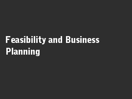 Online quiz Feasibility and Business Planning